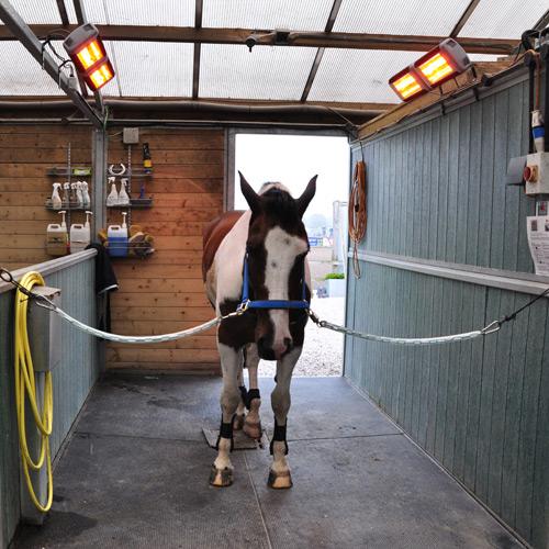 Обогреватель для лошадей