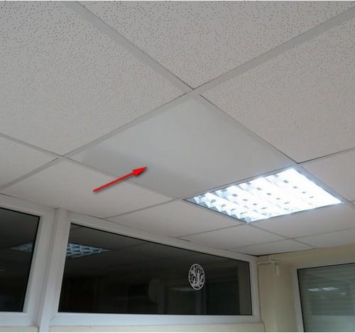 Мистер-Хит в потолок